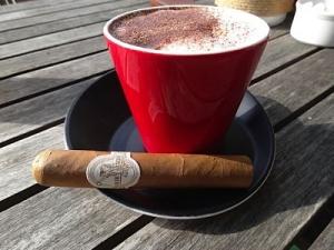 cigars Flor de Selva Robusto tasting rating