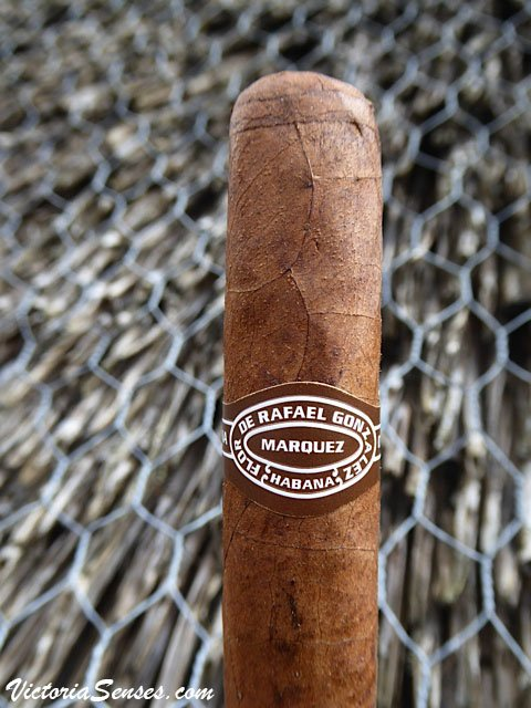 Rafael Gonzalez petit coronas дегустация сигар, Rafael Gonzalez cigar trevew.