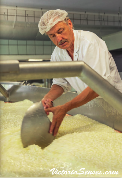 Best Austrian cheeses - Family owned Cheese company - Best Austrian cheese