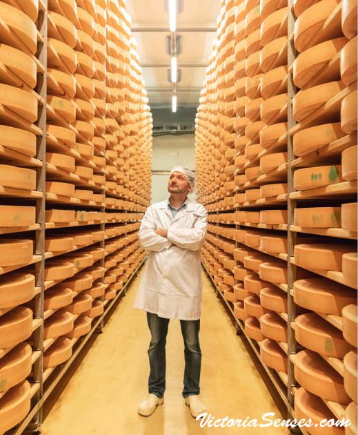 Austrian Cheese - Cheeses from Austria