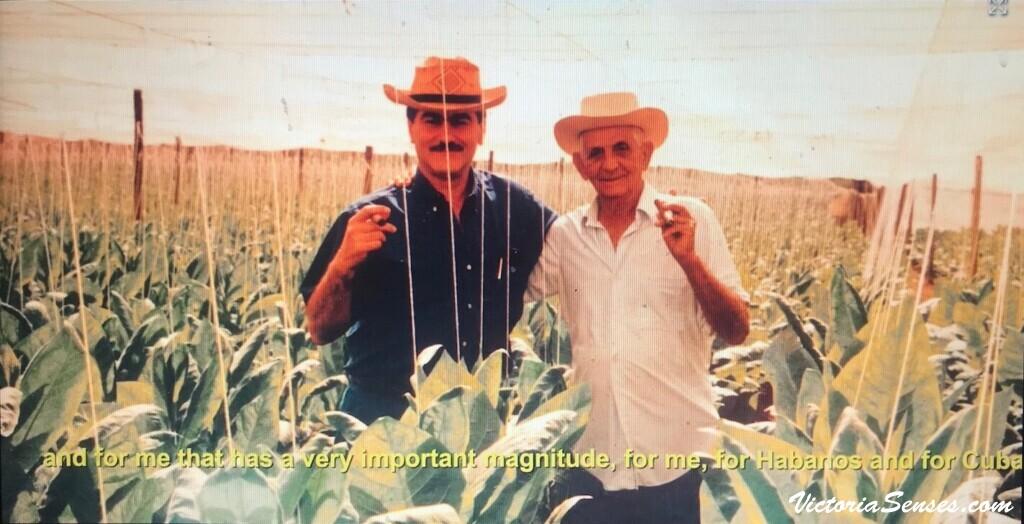 Zeidan and Robaina