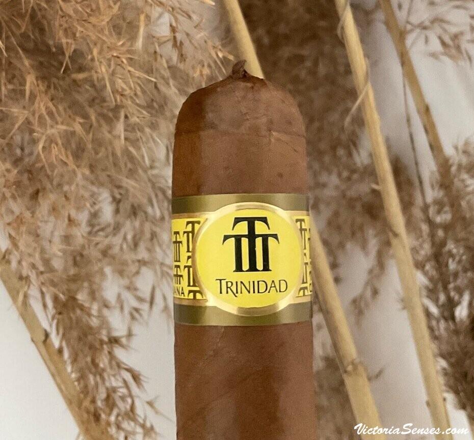 Cigar tasting - cigar review Cuban cigars Trinidad Vigia Review by Victoria Radugina